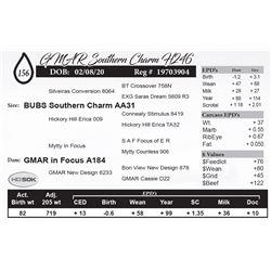 GMAR Southern Charm H246