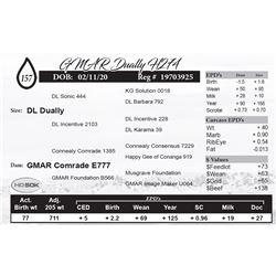 GMAR Dually H274