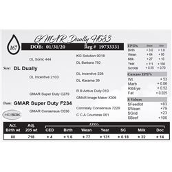 GMAR Dually H683