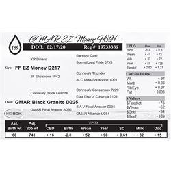 GMAR EZ Money H691