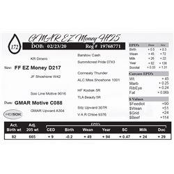GMAR EZ Money H725