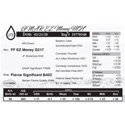 GMAR EZ Money H727