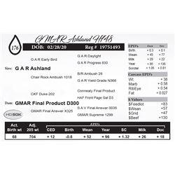 GMAR Ashland H748