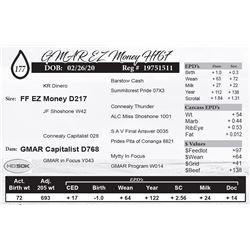 GMAR EZ Money H767