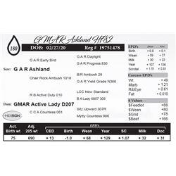 GMAR Ashland H782