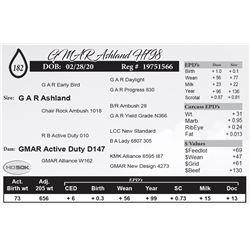 GMAR Ashland H798
