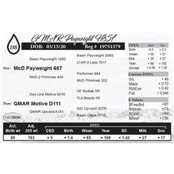 GMAR Payweight H857