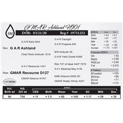 GMAR Ashland H901