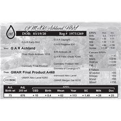 GMAR Ashland H887