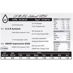 GMAR Ashland H794