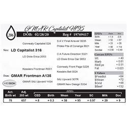 GMAR Capitalist H795