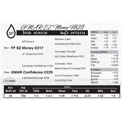 GMAR EZ Money H829