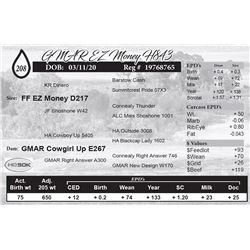GMAR EZ Money H843