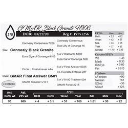 GMAR Black Granite H906