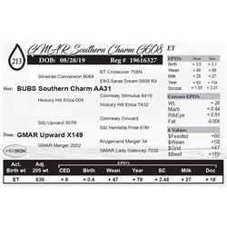 GMAR Southern Charm G608