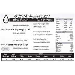 GMAR Payweight G614