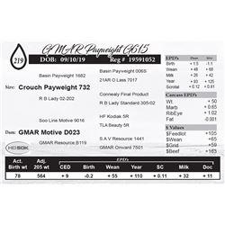 GMAR Payweight G615