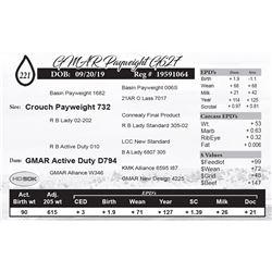 GMAR Payweight G627