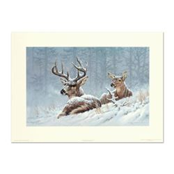 "Larry Fanning (1938-2014), ""Bedded Down - Whitetail Deer"" Limited Edition Lithograph, Numbered and H"