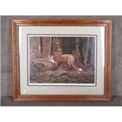 Red Fox by R. Schul