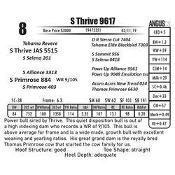 S Thrive 9617