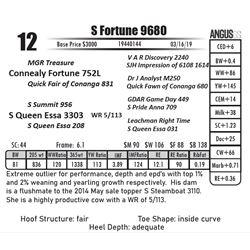 S Fortune 9680