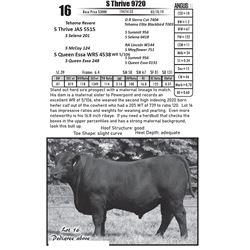S Thrive 9720