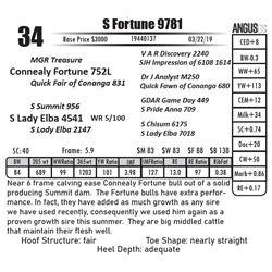 S Fortune 9781