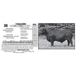 S Thrive 9649