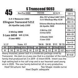 S Transcend 9693