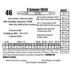 S Armour 9656