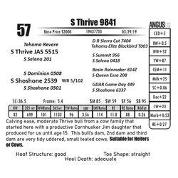 S Thrive 9841
