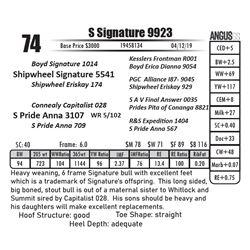 S Signature 9923