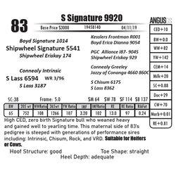 S Signature 9920