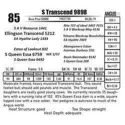 S Transcend 9898