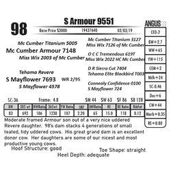 S Armour 9551