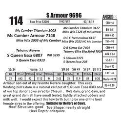 S Armour 9696