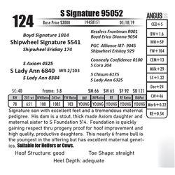 S Signature 95052