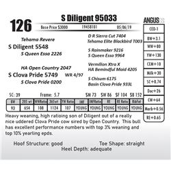 S Diligent 95033