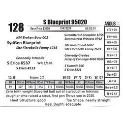 S Blueprint 95020