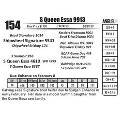 S Queen Essa 9913