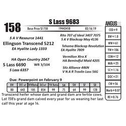 S Lass 9683