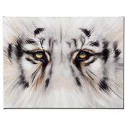 """Eye See You"" Limited Edition Giclee on Canvas by Martin Katon, Numbered and Hand Signed. This piece"