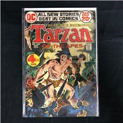 TARZAN OF THE APES #210 (DC COMICS)