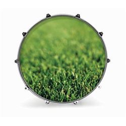 """Evans 24'' NATURE GRASS Resonant Drum Heads 24"""" 