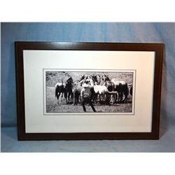 "Wertheimer Ranch, Utica, MT horse photo, 6"" x 18"", framed"