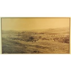 """L. A. Huffman 1907 original photo, 16"""" x 30"""", Throwing Rangers To The Roundup, framed, signed by Huf"""