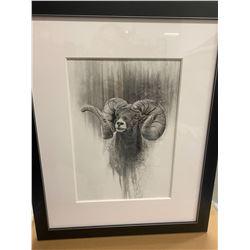 Bighorn Sheep Pencil Fade Original Framed