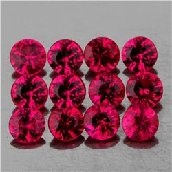 Natural Premium Red Burma Ruby 12 Pcs - Untreated