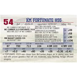 KM FORTUNATE H55
